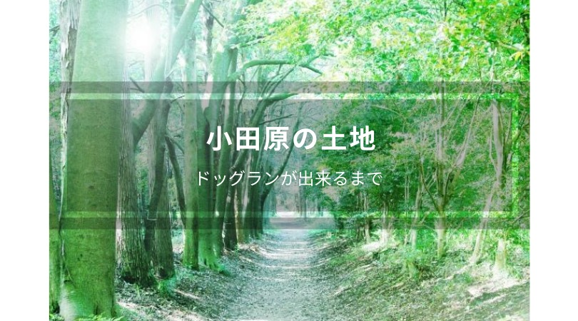 新たな候補地、小田原の土地を現地視察!買うの買わないの!?どうする私!
