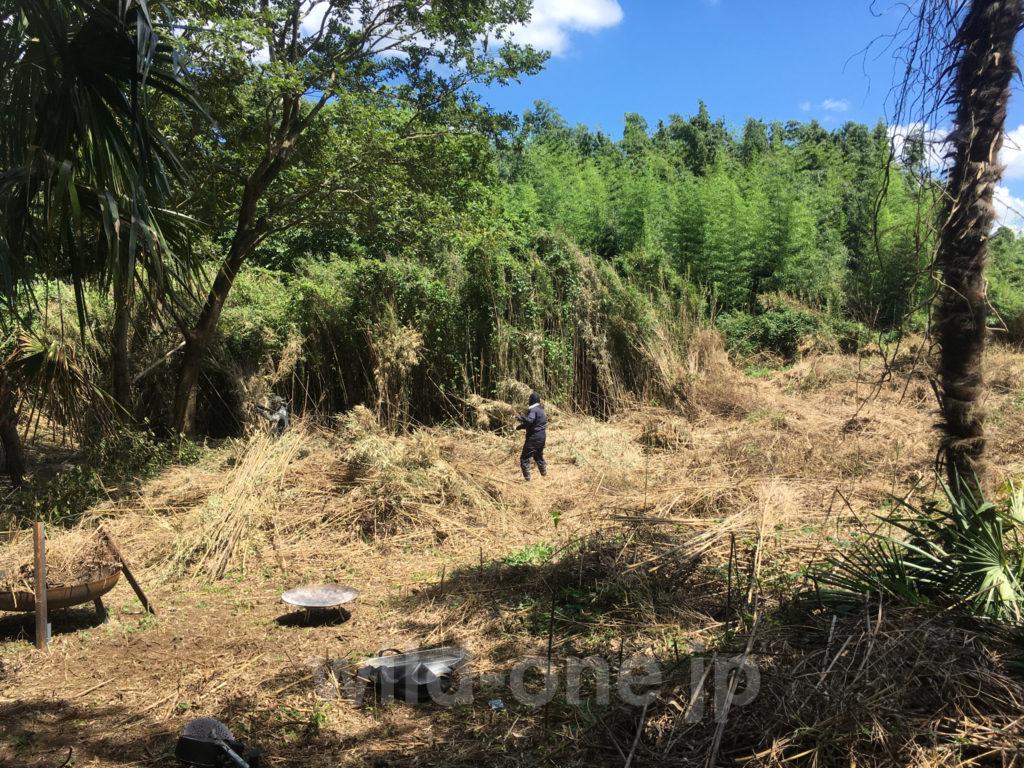 WILDONE開拓・笹とツタで覆われた土地2