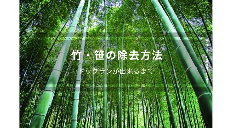 笹・竹の除去・開拓方法