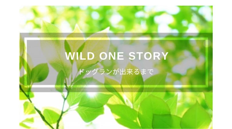 Wild One Story