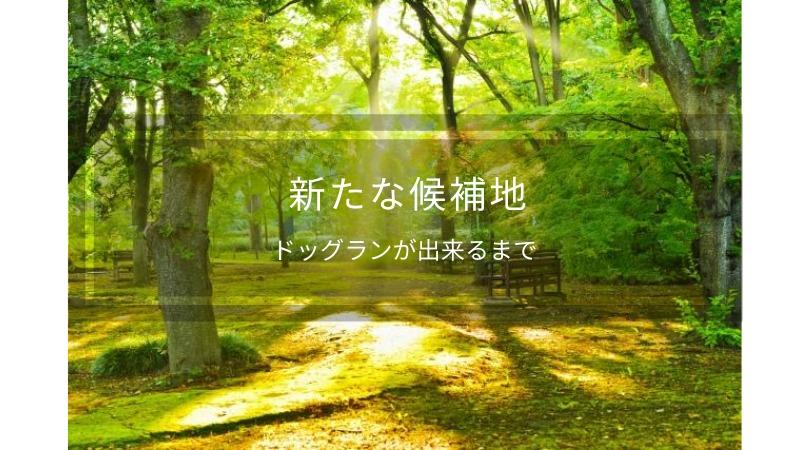 小田原に新たなドッグランの土地候補出現!