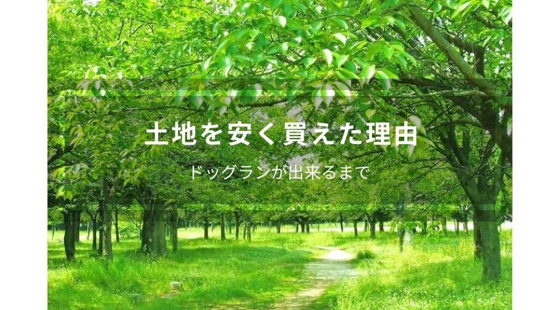 富里市の山林約3000坪を激安価格で購入できた理由とその経緯
